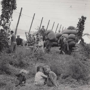 Baggers and Children in a Herefordshire Hop Yard