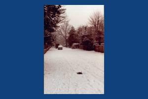 Church Path, Merton Park