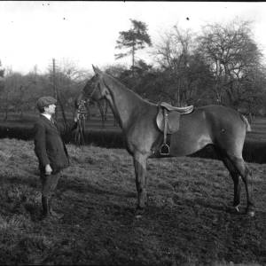 G36-143-13 Man with horse, orchard background.jpg