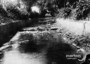 The Beverley Brook, Morden