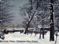 Cannon Hill Lane, Raynes Park