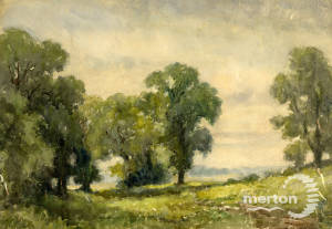 """J A Crawford: """"Hilly Fields"""""""