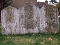 Gravestone of Mary Ann Susannae and Nelson's Gardener