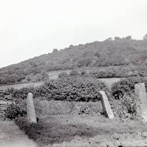 Standing Stones, LLanrothal, Herefordshire