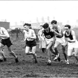 A cross country race in progress.