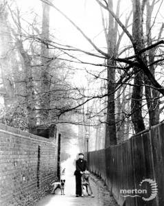Sir Cato Worsfold's dogs pictured in Cold Blows Lane