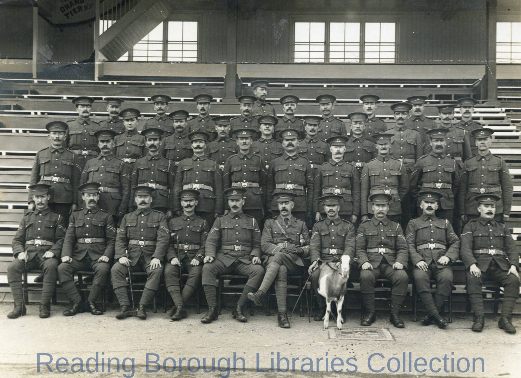 Corporals and Regimental Pet Goat, National Reserve Prison Guard, Prisoner-of-War- Camp, Newbury Racecourse, 1914.