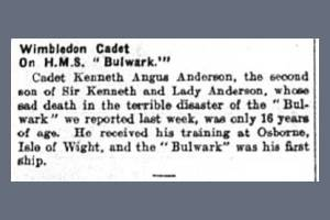 Newspaper Extract - Kenneth Anderson