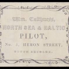 William Caithness, Pilot