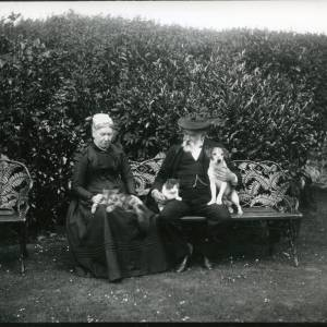 G36-002-09 Old couple seated in garden with two cats and a dog.jpg