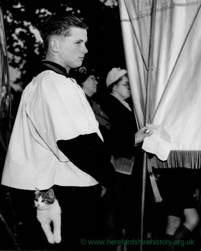 188 - Choir boy holding banner, kitten in his pocket