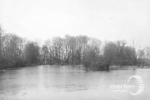 Wandle Park, Mill Pond