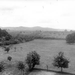 G36-235-11 Distant view of hills, thatched cottage amidst trees in foreground.jpg