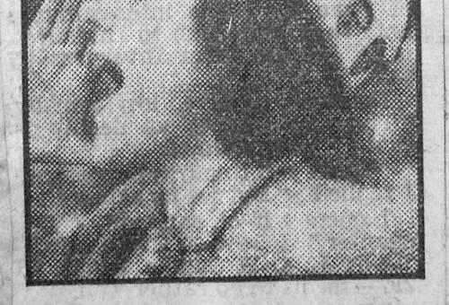 19490129 Sheffield Wed Fan