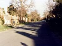 Drax Avenue, Wimbledon