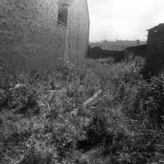 Derelict Land Garden Lane 1966