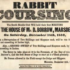 Rabbit Coursing at Marsden
