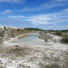 2020 April The Quarry Houghton Regis