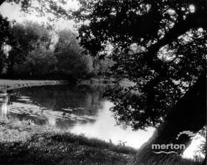 River Wandle, near Bishopsford Road, Mitcham