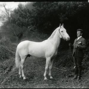 G36-008-05 Man with grey horse.jpg
