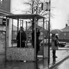 Bus Shelter at Cleadon Park