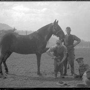 Three soldiers with horse, possibly fusiliers