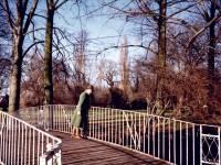 Morden Hall Park, Morden: Bridge over River Wandle