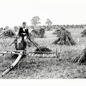 """Harvest Time, using """"Rattling Jack"""" a reaping machine, 1932"""