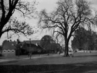 Cranmer Road: Public Assistance Office & R.C. Chapel