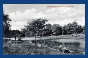 Wimbledon Common: Pond