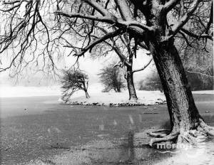 One Island Pond in Winter