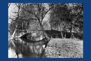 Morris & Co. Merton: Bridge within the plot