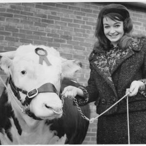 273 - Diana Brownbridge (Day) holding Hereford bull