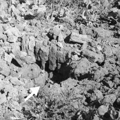 Bomb damage at unknown location
