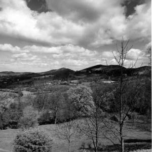 Malvern Hills from Ledbury Road