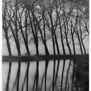 224 - Winter time scene; trees reflected in water