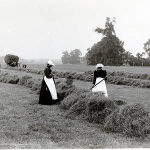 Haymaking, Lugg Meadows, Hereford