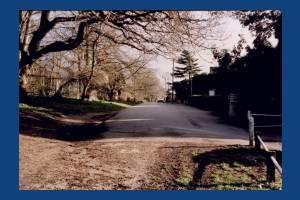 Barham Road, Wimbledon