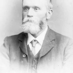 D. McNeill