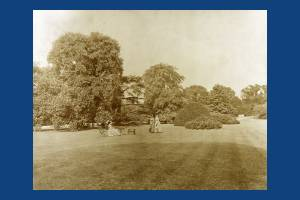 Woodhayes, Wimbledon: View of the garden