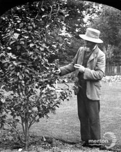 Thomas Francis Senior in the garden of London House