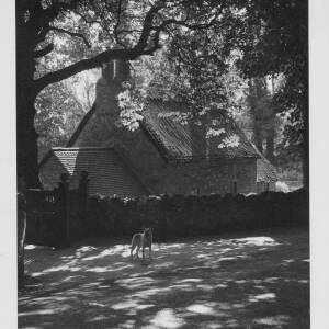 496 - Cottage surrounded by stone wall, Alsatian dog standing in front