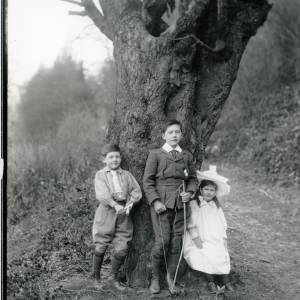 G36-008-04 Two boys, one with a bow and a little girl by a tree.jpg