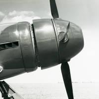 Hawker Tempest V (?): Napier