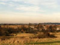 View over Mitcham from Mitcham Common