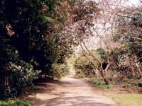 Cannizaro Park, Wimbledon