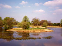 Seven Islands Pond, Mitcham Common
