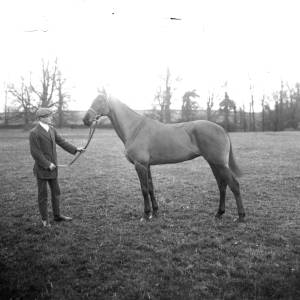 G36-326-07 Man posing with a horse.jpg