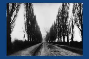 Poplar Avenue, Merton Park: Looking south