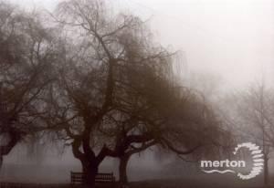 Cranmer Road: In Fog